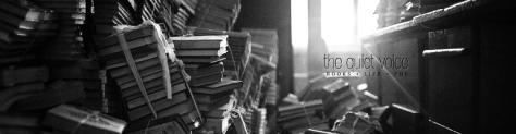 the-quiet-voice-book-blog-banner